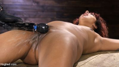 Hogtied - March 28, 2019 - Daisy Ducati