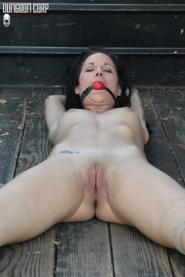 PerfectSlave – Truck Tied and Cumming – Sadie Dawson