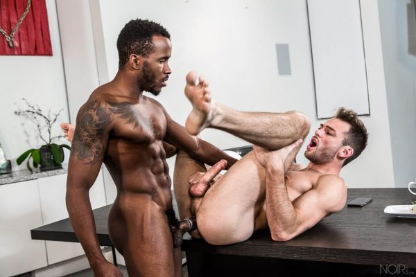 NM – The Exhibitionist – Pheonix Fellington & Max Adonis