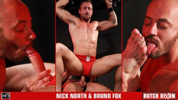 BD - Bruno Fox & Nick North