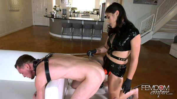 Kendra Spade - Trained for Dick