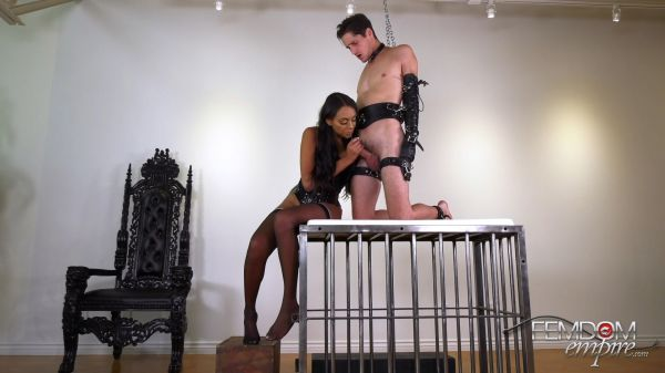 Bethany Benz - Owned Slave Cock