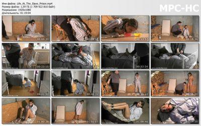JocoboClips - Life At The Slave Prison