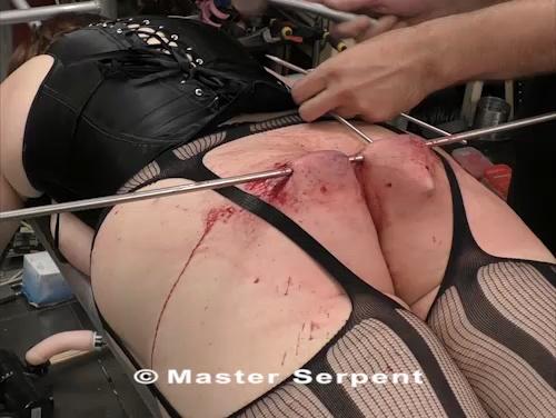 Torture 1279-sp v10