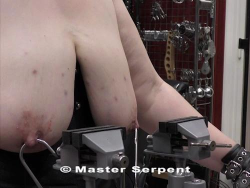 Torture 1281-sp v13