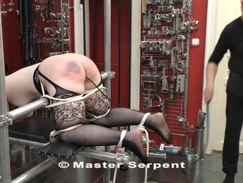 Torture 1283-zs v01