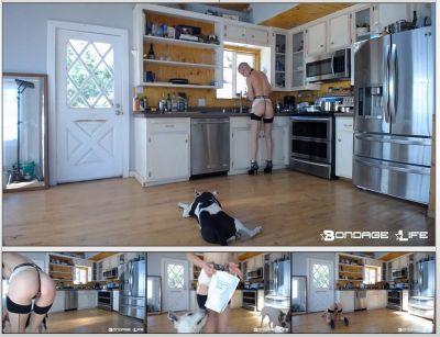 Bondage Life – Domestic Service – Rachel Greyhound