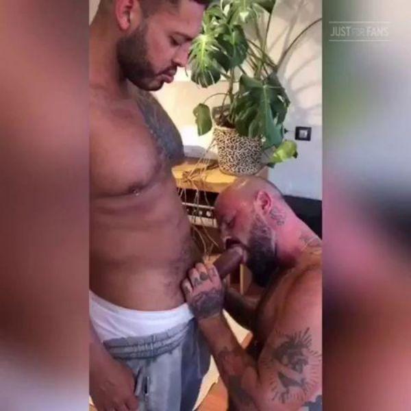 RFC - Viktor Rom & Rogue Status - Sex in Barcelona
