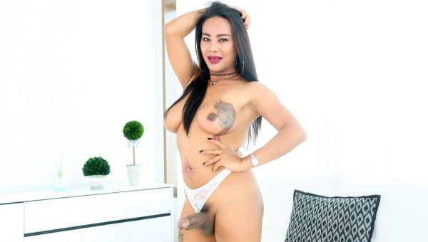Jasmine I - TS Jasmine: Big-Cock Masturbation, Cum - TS Playground #33 Ladyboy Edition [FullHD 1080p] (Evil Angel)