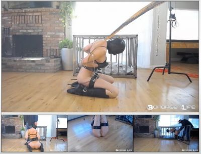 Bondage Life – Cage Time (BrutalMaster Edition) – Rachel Greyhound