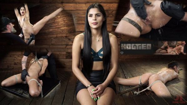 Katya Rodriguez Hogtied Newcomer Bound