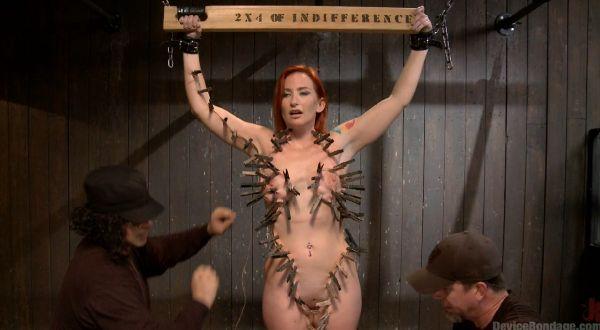 Sophia Locke - 2 x 4 of Indifference