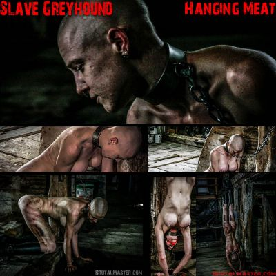 BrutalMaster - Slave Greyhound | 10 November 2019