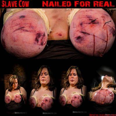 BrutalMaster - Slave Cow   2 May 2019