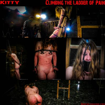 BrutalMaster – Kitty | 4 June 2019