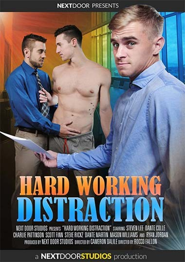 NDS - Hard Working Distraction