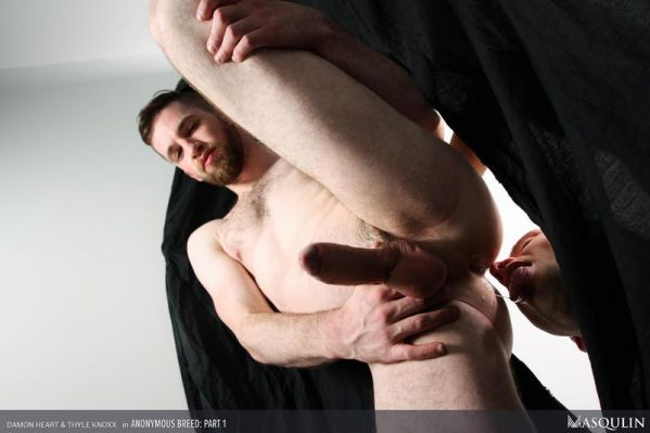 MQ - Damon Heart, Thyle Knoxx - Anonymous Breed, Part 1