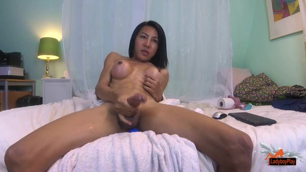 Thippy69 - Webcam Cum Compilation (LadyboyPlay/FullHD/2019)